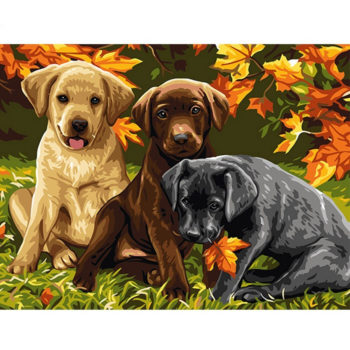 Three Dogs DIY Painting By Numbers