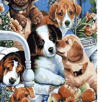 Cute Dogs DIY Painting By Numbers