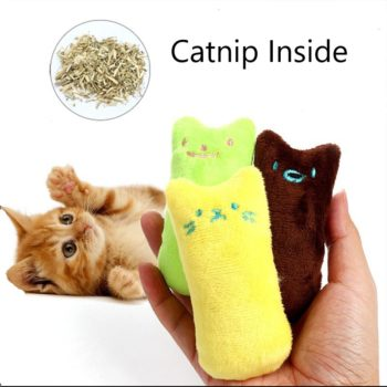 Catnip Plush Toy